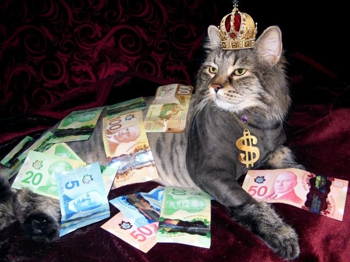 money-1144553